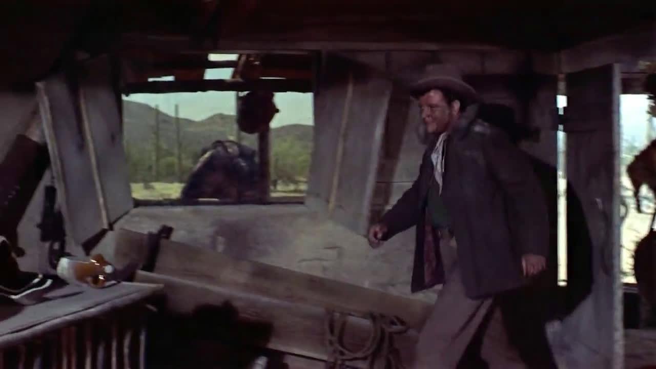 Стрелците от форт Фуста ( The Guns of Fort Petticoat 1957 )