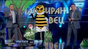 Пчелата изпълнява Whenever, Whenever на Shakira  Маскираният певец